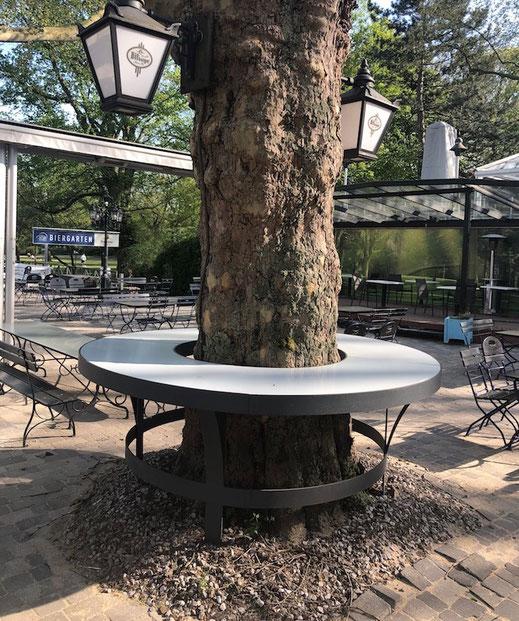 Theke um einen Baum in der Aussengastronomie