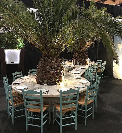 Sitzgruppe unter Palmen