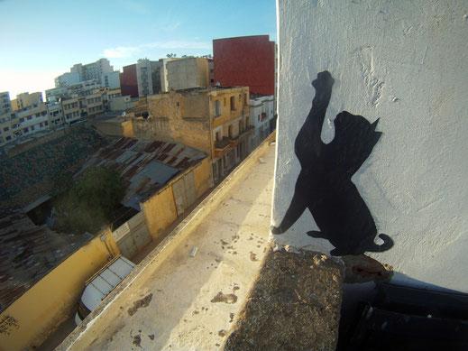 Sur les toits de Meknès Avril 2012
