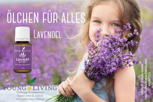 Lavendel - Ölchen für alles