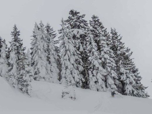 Most of the accessible terrain at Goderdzi Pass is not steep. However, we had our powder runs ...