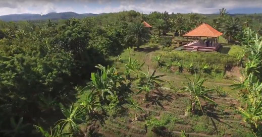 Tabanan land for sale. West Bali.