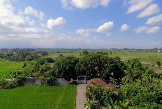 Cempaka land for sale. Tabanan land for sale