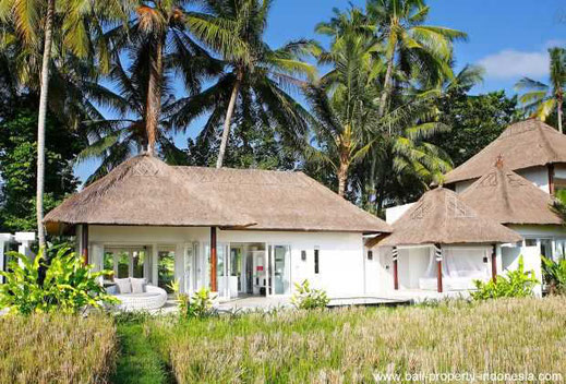 Lodtunduh 1 bedroom villa for sale with rental license and management