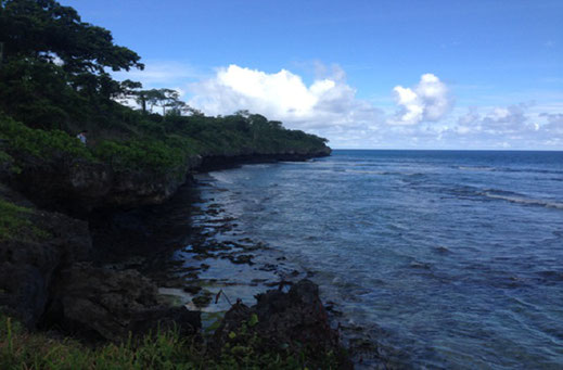 Land for sale Sumba