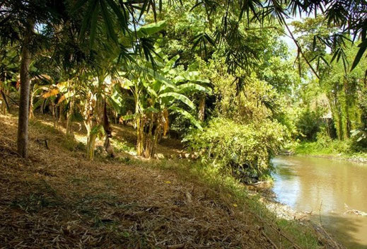 River front land for sale in Padang Galak, North of Sanur.