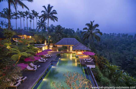 Mountain resort for sale North of Ubud.