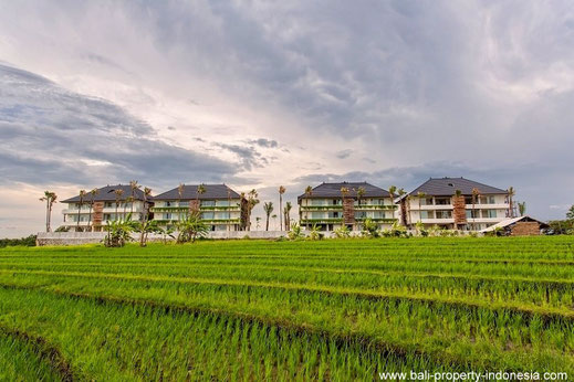1, 2 or 3 bedroom apartments for sale in Canggu, Bali.