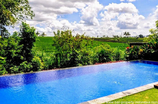 Pererenan  villa for sale with rice fields view