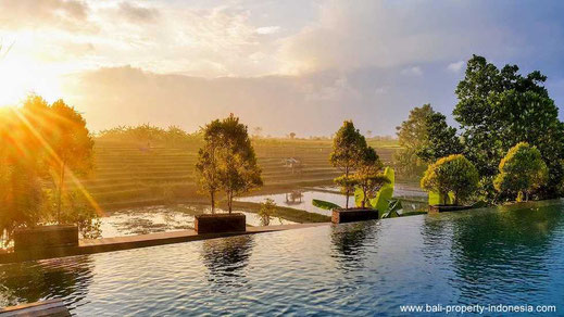 Luxurious 3 bedroom villa for sale, Canggu, South Bali.