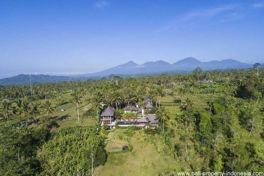 Ubud mountain villa for sale