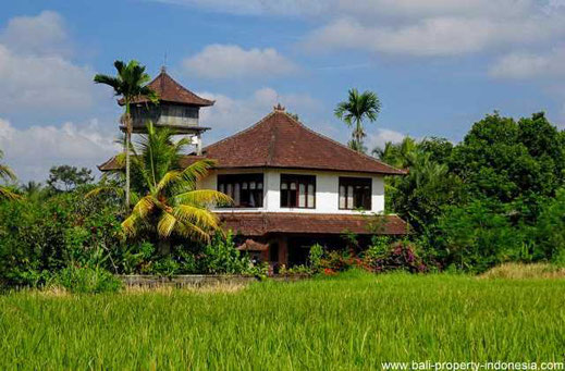 Tabanan house for sale with 4 bedrooms