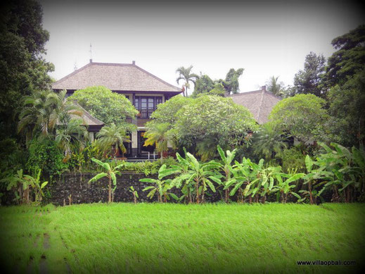 Bali real estate on offer for sale.