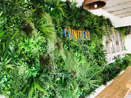 Mur végétal stabilisé gamme feuillu