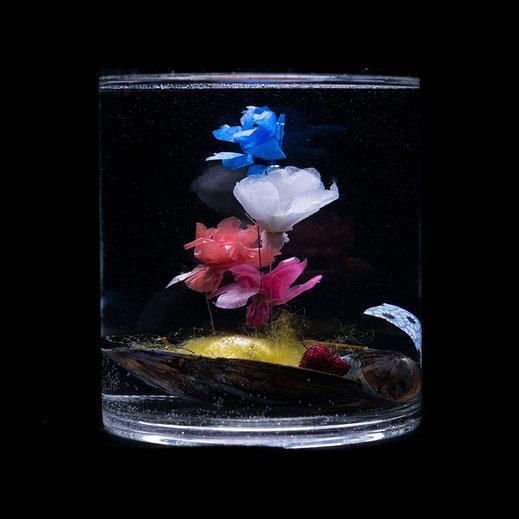 Wundermuschel, handgemacht, Blumen, Seidenpapier  © Tanja Pfaff/TAKKITA