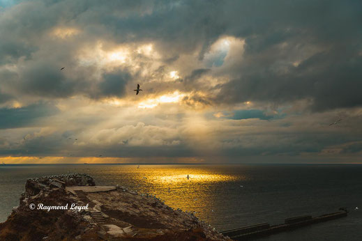 helgoland natur wolken licht meer