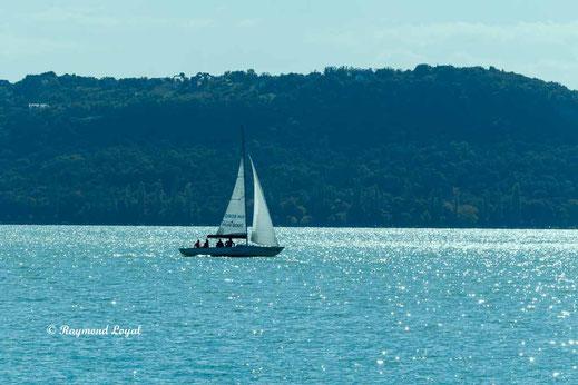 lake balaton image sailing boat