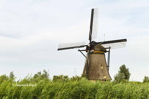 kinderdijk windmills images