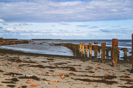 Helgoland image