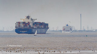 container ship river elbe