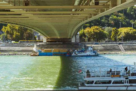 budapest elizabeth bridge