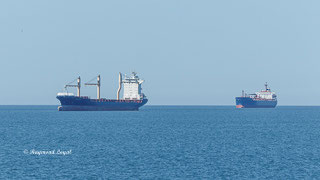 cargo ship northsea