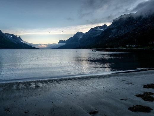 Norwegen Norway Ersfjord kühler Morgen Morgenstimmung