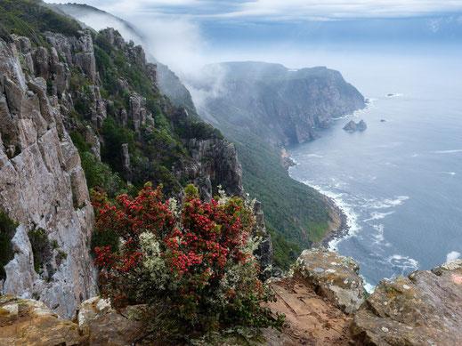 Tasmanien Tasmania Mount Raoul Lookout Cape Raoul Aussicht Meer und Berge