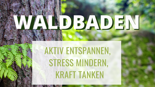 Verena Bunte Waldbaden Wald baden Diemelsee Sauerland Auszeit Entspannung