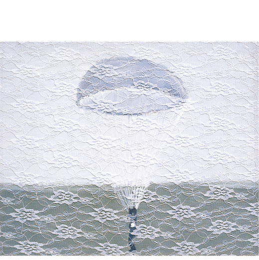 Another Way to Fly       18x15 inches        2009