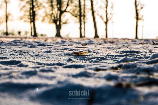 Printprodukt Holz - schick! photography | Ihr professioneller Fotograf in Zofingen
