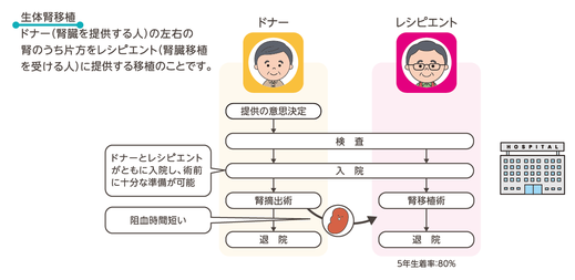 生体腎移植