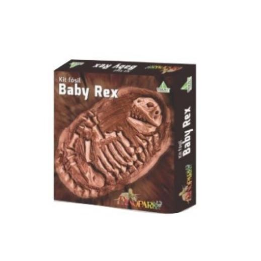 Kit fósil baby rex