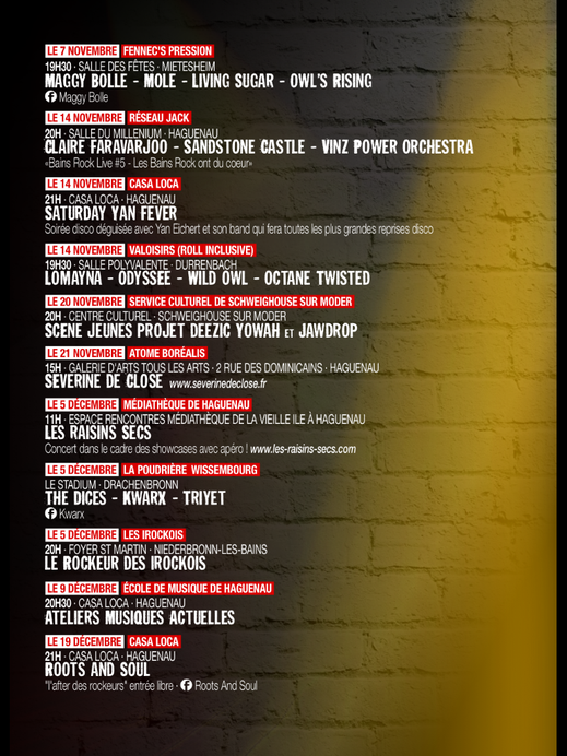 Concert Rockeurs ont du coeur Haguenau 2015