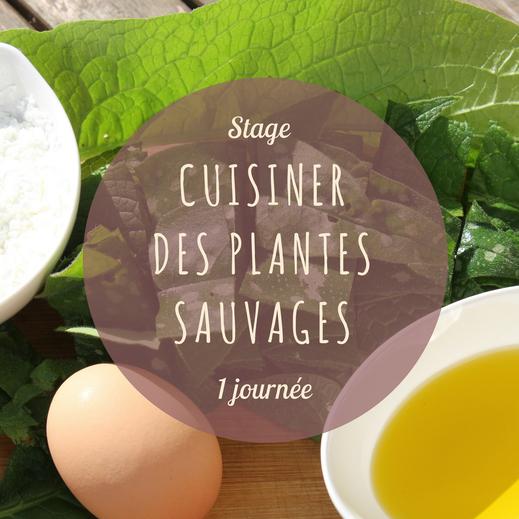 Stage de cuisine de plantes sauvages en Touraine