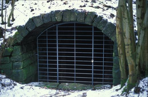 Zum Schutz vor Störungen vergitterter Keller. Foto: M. Hammer
