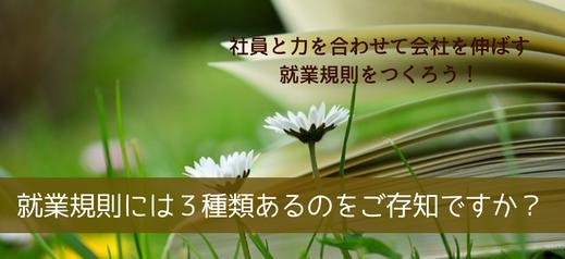 就業規則には3種類あるのをご存じですか?野原に広げられた書籍とマーガレットの白い花。