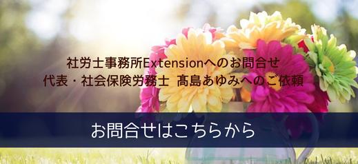 社労士事務所Extensionへのお問合せ、高島あゆみへのご依頼はこちらから。デイジーの花束。