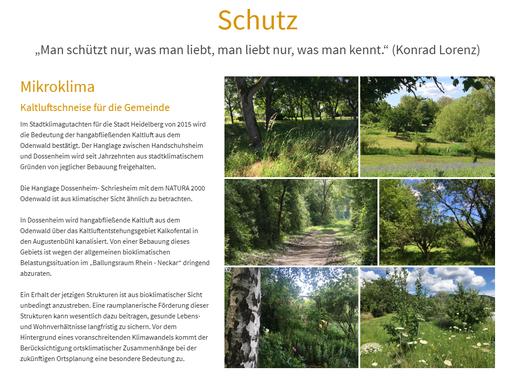 Screenshot von der Homepage des Augustenbühl e.V. - Unterseite Schutz