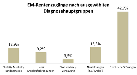 Infografik: Diagnosehauptgruppen