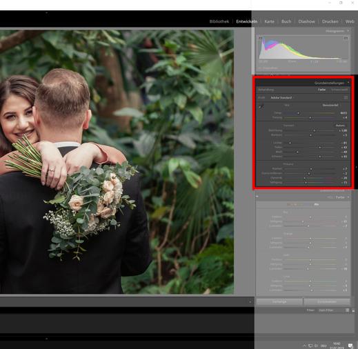 Gewächshaus, Tageslicht - Nikon D300- Grundeinstellungen für HDR Retro Old Effekt