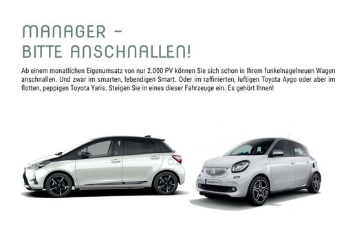 NATURA VITALIS AUTO PROGRAMM FÜR MANAGER