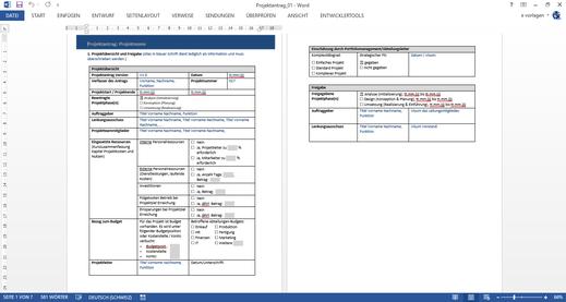 Gratis Vorlage, Projektidee, Projektsteckbrief, Projektzusammenfassung