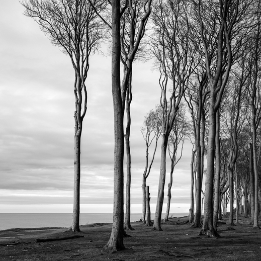 Nienhagen, Holger Nimtz, seascape, Baltic Sea, black and white, b&w, black, white, photo, photograph, wallart, silence, water, ocean, surreal, still, fineart, coast, coastline, decorative, soul,