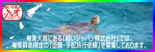 結いジャパン株式会社 企画・手配旅行