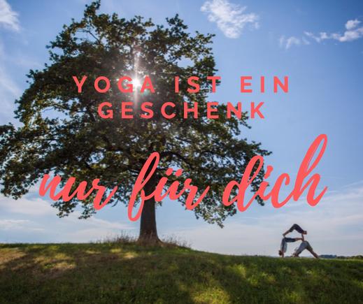 Yamida Yogalehrerausbildung mit der YOM® Yogaschule Münsterland