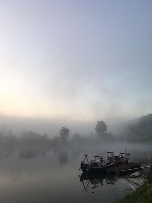 """""""Olive"""" und """"aracanga"""" auf dem Doubs, morgens auf dem Weg nach Süden. © Carina"""