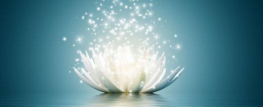 lotus et étoiles de lumière