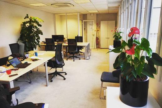 location de plantes pour ces bureaux à Paris