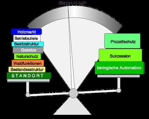 Quelle: Dr. G. Strobel, Allgemeine Forstzeitschrift 24 / 1997